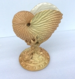 Antique Royal Worcester blush Nautilus shell vase  - Click to Enlarge