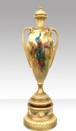 Magnificent Large Antique Hand Painted Blush Ivory Royal Worcester Peacock Urn Vase Complete With Cover. - Click to Enlarge